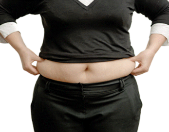 Stomach+Fat